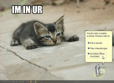 funny-pictures-lolcat-office-assistant1.jpg